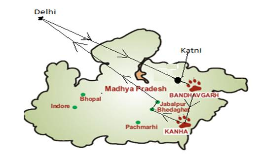 Tiger Express Route