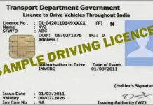 Driving Licence