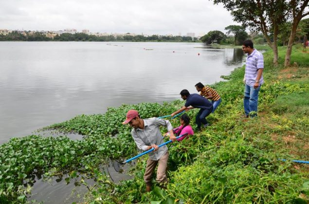POTHER DAABI CLEANING OF LAKE AT BANGALORE 2
