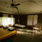Foxtail Eco Retreat Rooms at Tipeshwer
