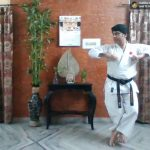 Subject:Japan Karate Association instructors teaching karate online for free