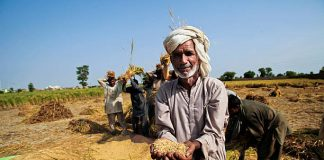 CSE launched a new  report on how Indian farmers can deal with adverse weather conditions