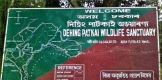 Dehing Patkai National Park