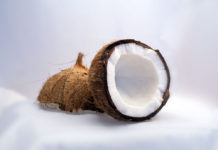 Coconut - Image Source Wikipedia