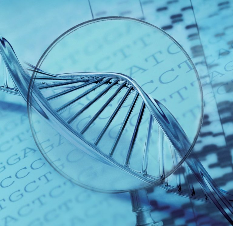 WHO issues new recommendations on human genome editing for the advancement of public health
