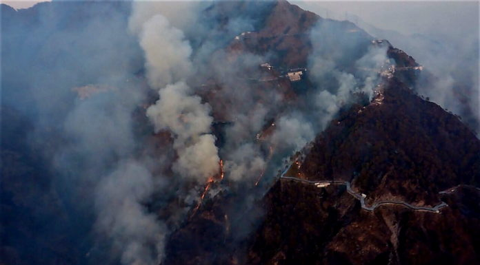 Forest Fire at Katra