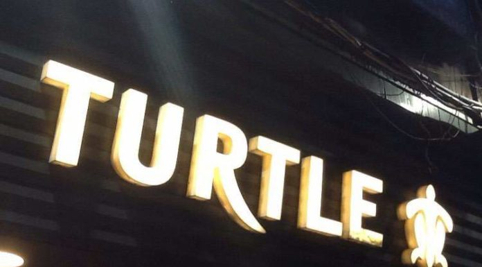 Turtle Limited