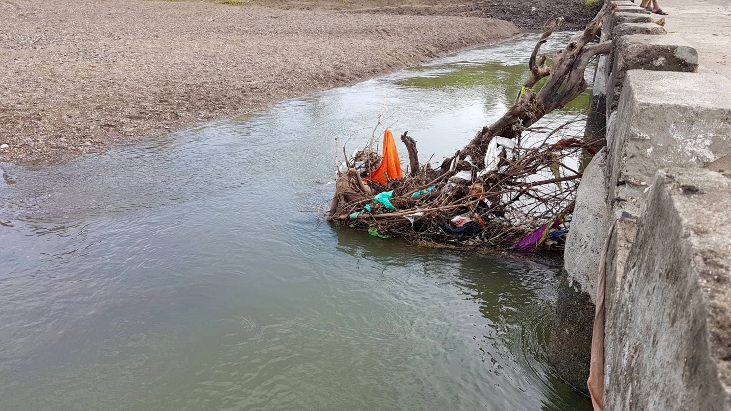 Along with garbage rivers also clean up a lot of deadwood