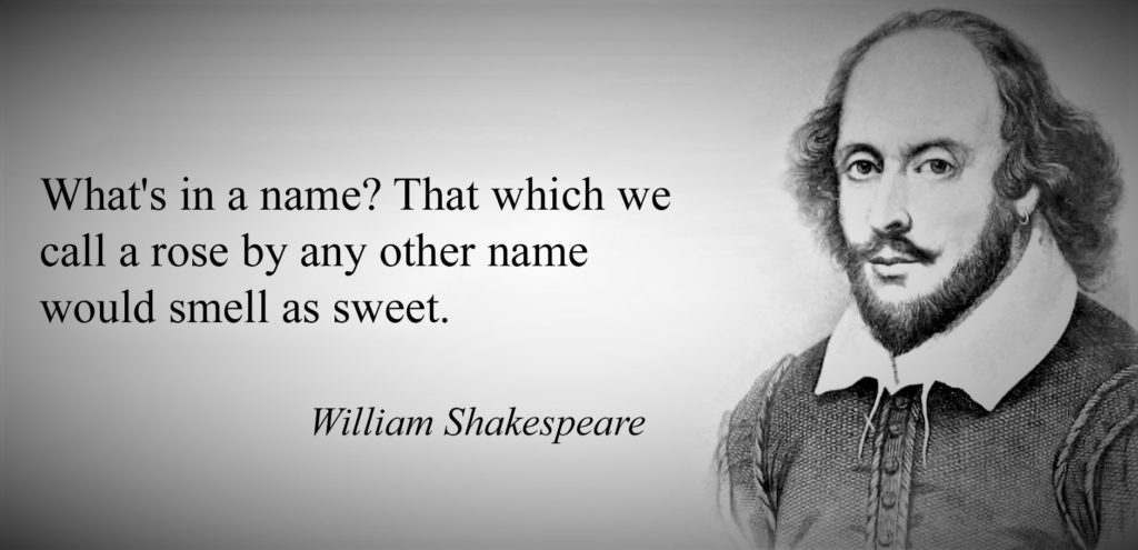 What's in the Name by William Shakespeare 2