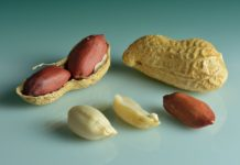 Groundnuts by Wikipedia