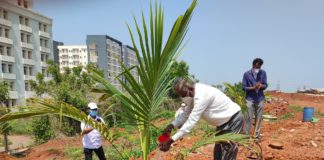 Plantation Drive organized at IIT Bhubaneswar on the occasion of World Environment Day