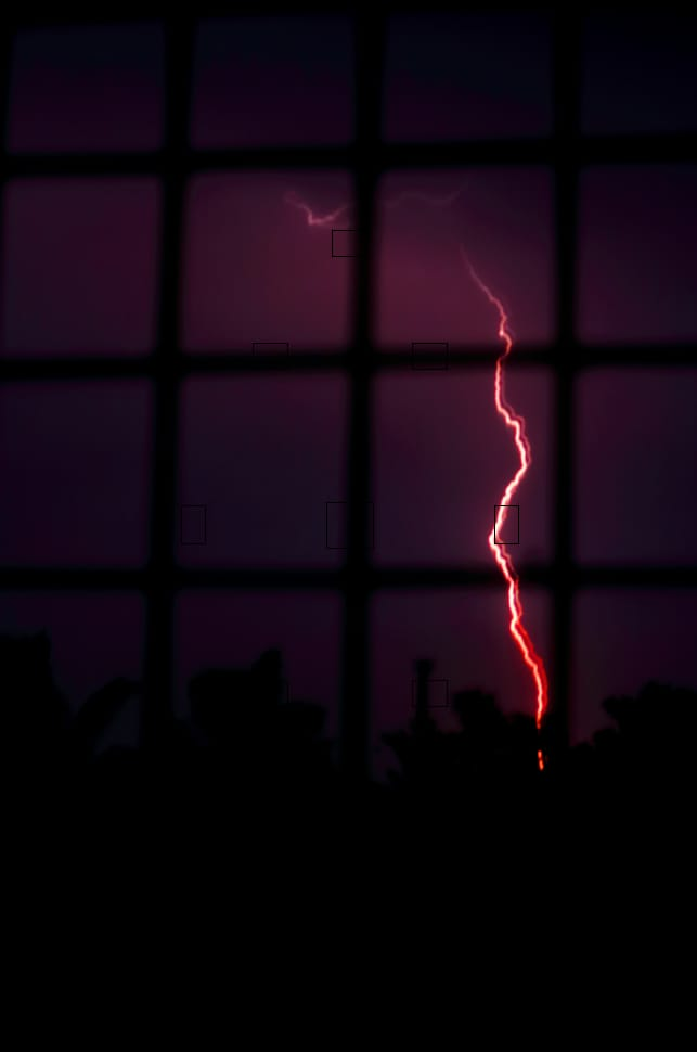 34 per cent rise in lightning strikes in 2020-21 over previous years, leaving 1,697 dead: Down To Earth