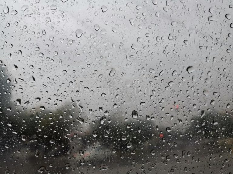 South West Monsoon likely to revive over South Peninsula from 8th July